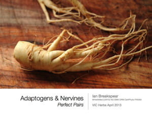 Adaptogens & Nervines