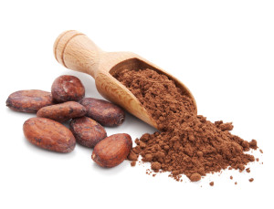 Cacao beans & cocoa powder in a wooden scoop